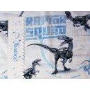 Raptor Squad weiß-hellblau, Jersey