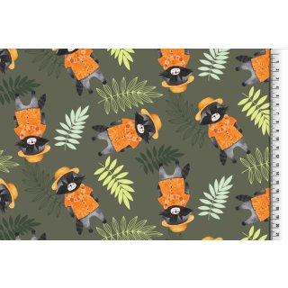 Waschbär Grau Orange Jersey