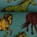 Klaas - Pferde Petrol